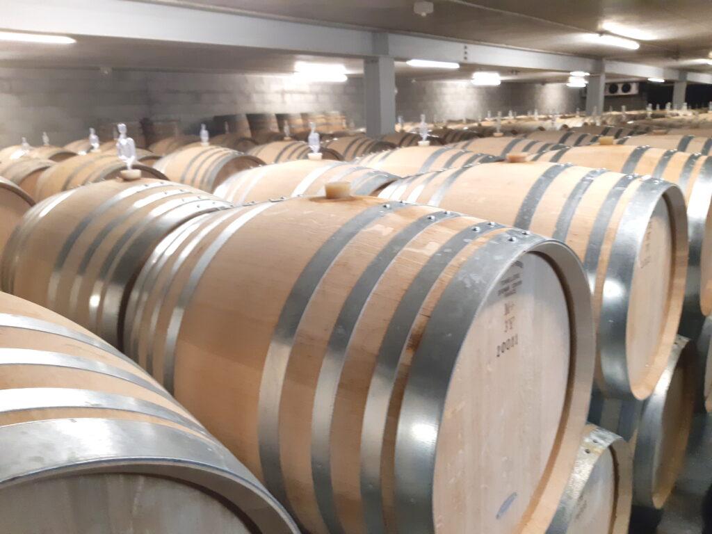 Kumeu River barrels