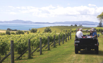 A weekend with the winemakers