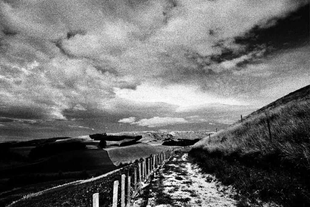 Bell Hill hillside
