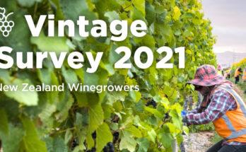 Vintage survey 2021
