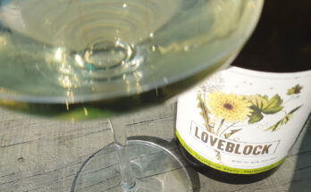 Love Block Sauvignon Blanc 2020