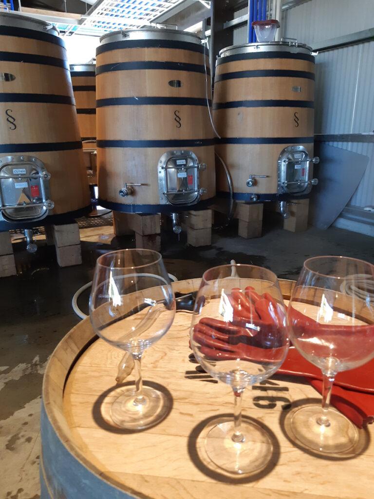 Pyramid Valley winery