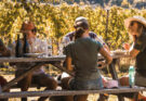 NZ Winegrowers report