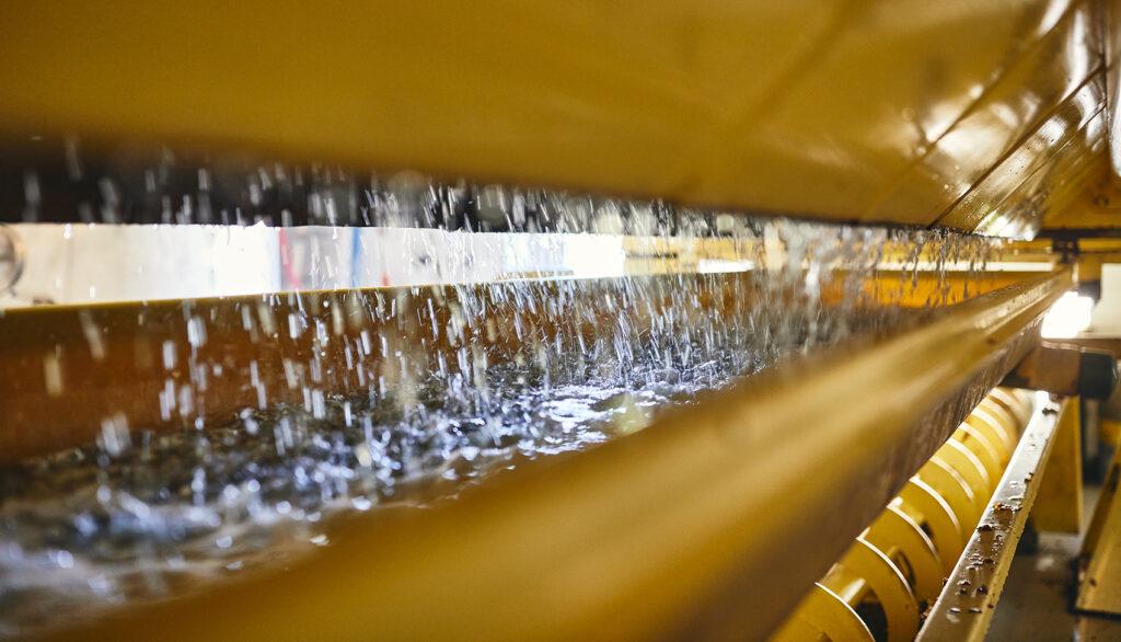 No.1 champagne press