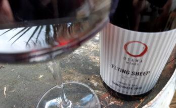 Osawa Wines Flying Sheep Sangiovese 2015